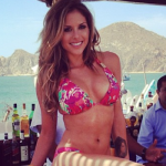 60 Hottest Instagrams Of Brittney Palmer [Gallery]